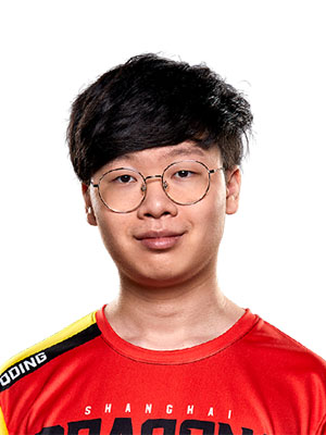 DDing Shanghai Dragons